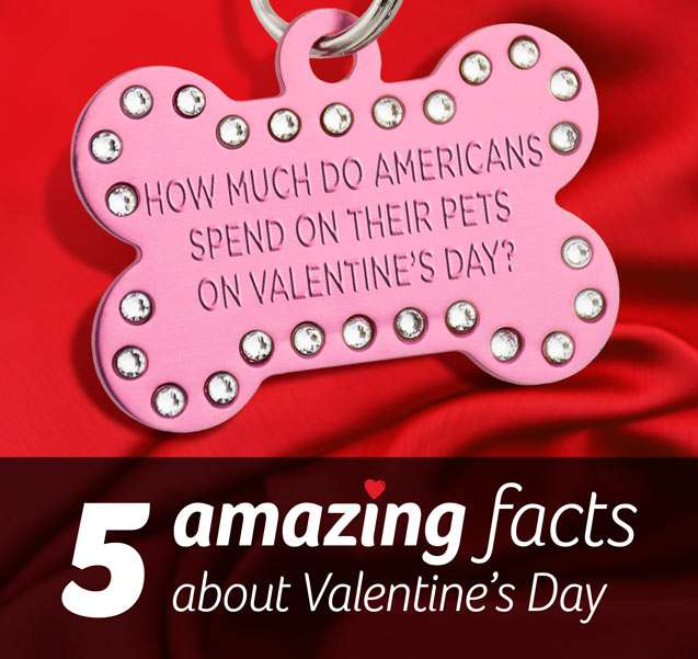 5 Amazing Facts About Valentine S Day 7dayshop Blog