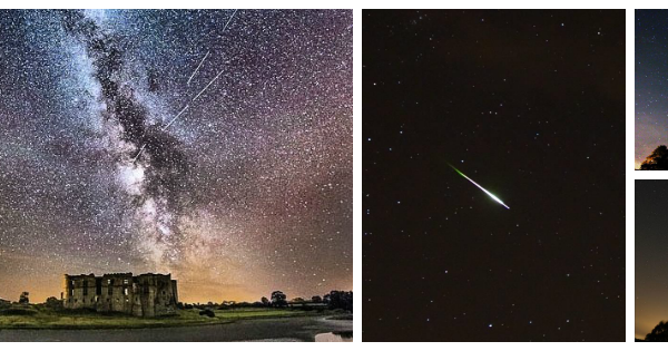 Perseid collage